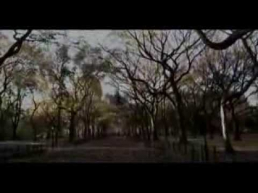 ярослав евдокимов слушать его песни онлайн видео