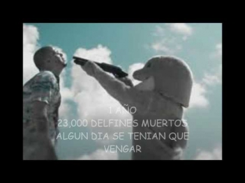 video oficial de calle13 muerte en hawaii